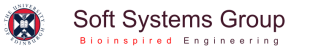 University of Edinburgh Soft Systems Group